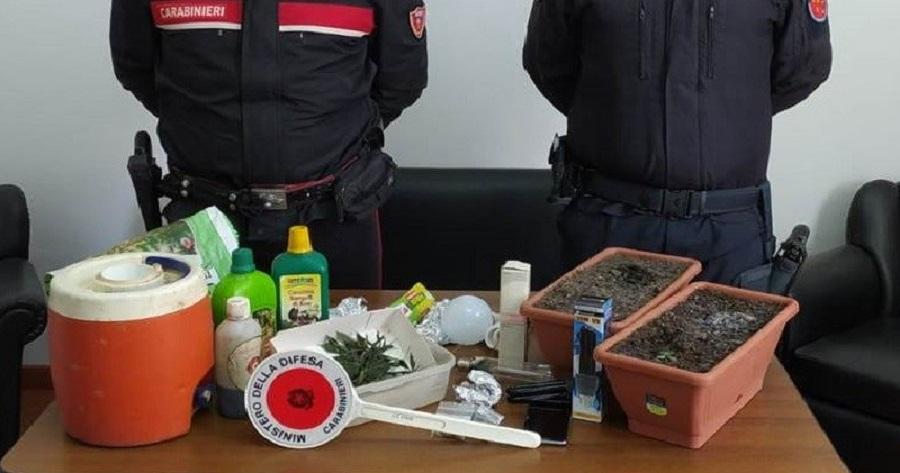 Alcamo: controlli antidroga dei carabinieri, un arresto
