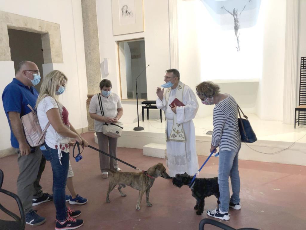 Festeggiato S. Rocco a Trapani