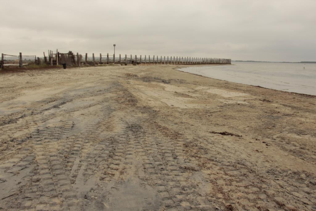 Al via i lavori per ripulire la spiaggia di Birgi