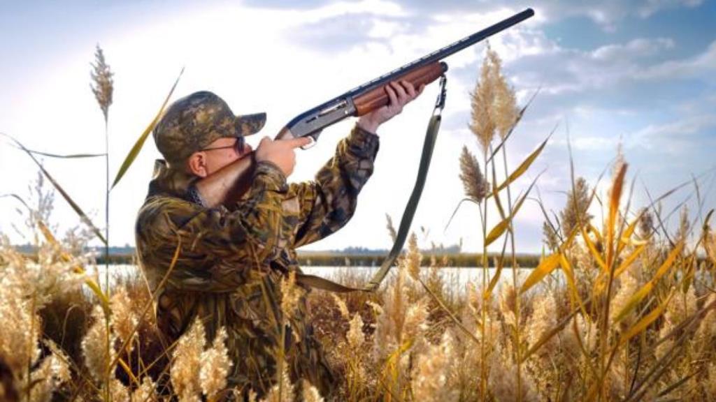 Incendi e animali morti bruciati, quattro deputati Ars chiedono di fermare la caccia