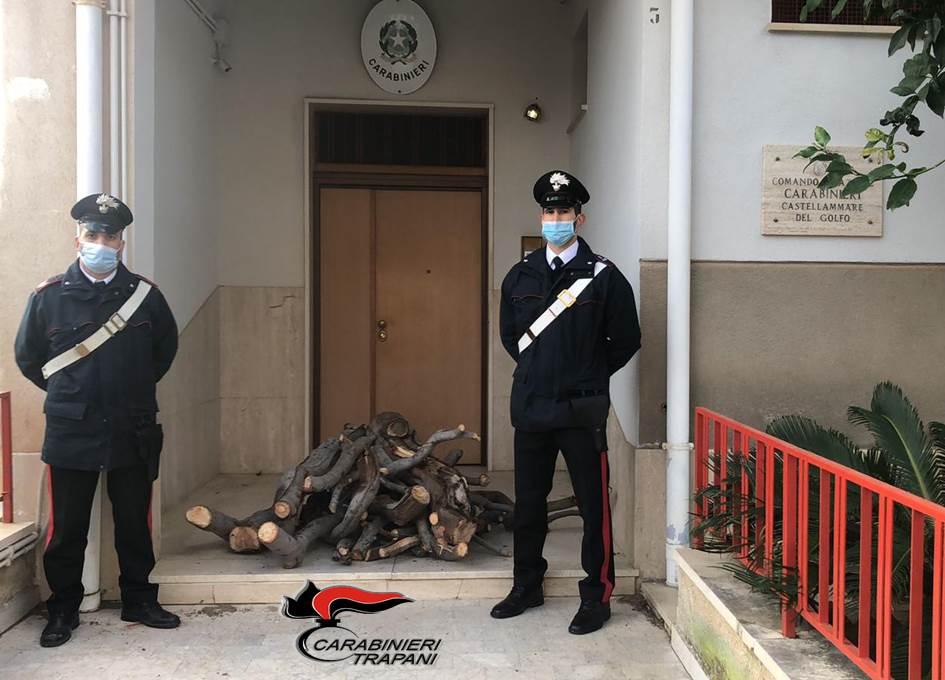 Castellammare del Golfo: taglia albero per la legna del proprio camino, arrestato un uomo