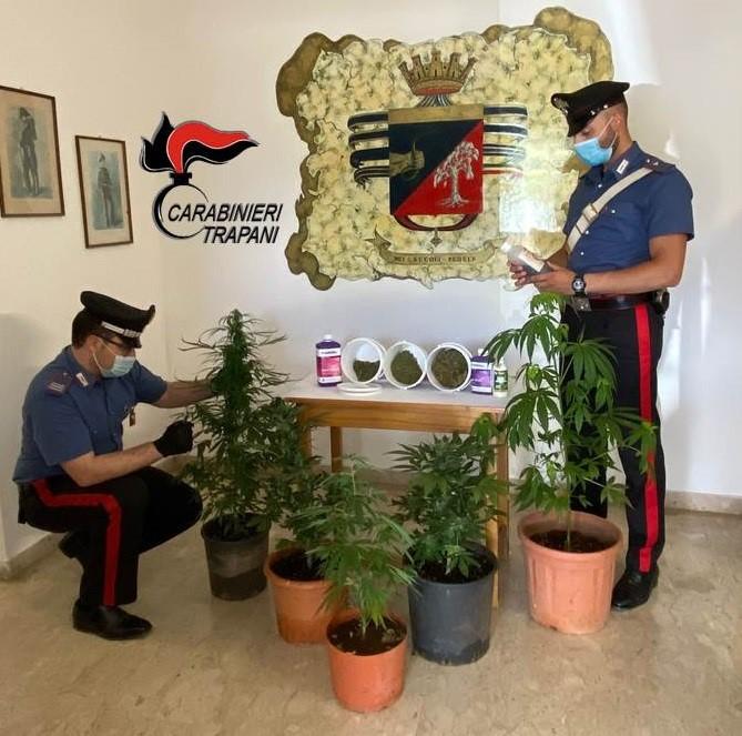 Coltivava marijuana in casa, arrestato un uomo a Petrosino