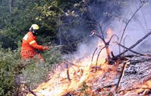 Incendio su Monte Sparagio