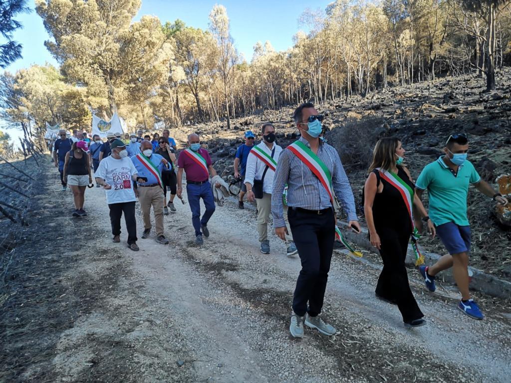Marcia per San Matteo, oltre 300 ieri per salvare gli alberi dagli incendi