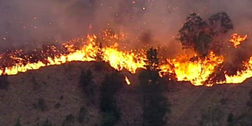 Trapani, esposto in Procura contro gli incendi boschivi