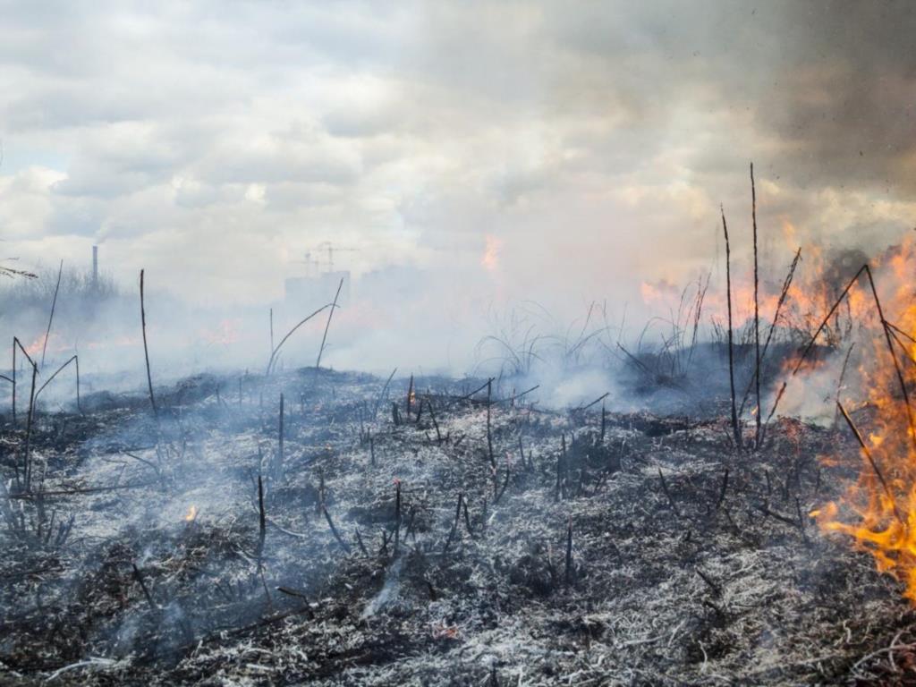 Prevenzione incendi, a Erice c'è tempo fino al 15 maggio per ripulire i terreni