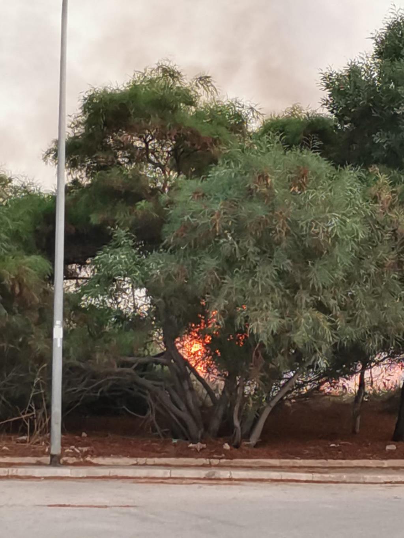 Trapani, due mezzi dei Vigili del Fuoco per spegnere un incendio di sterpaglie in zona via Virgilio (video)