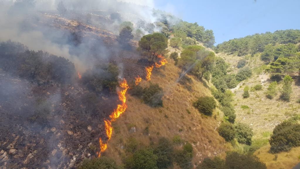 Incendi. Pene più severe, sanzioni pecuniarie e sequestro dei beni per i piromani