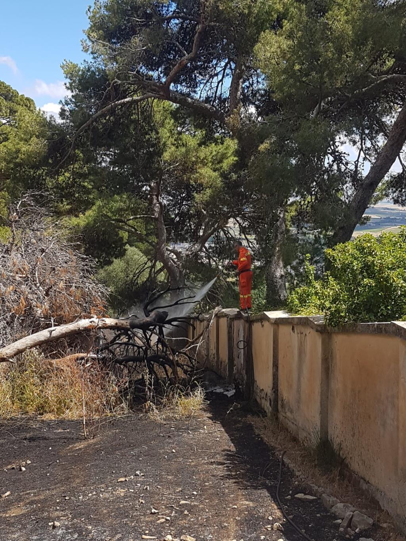 Incendio nei pressi dell'ospedaletto di Torrebianca