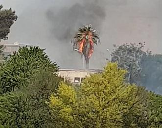 Marsala: incendio al quartiere Sappusi