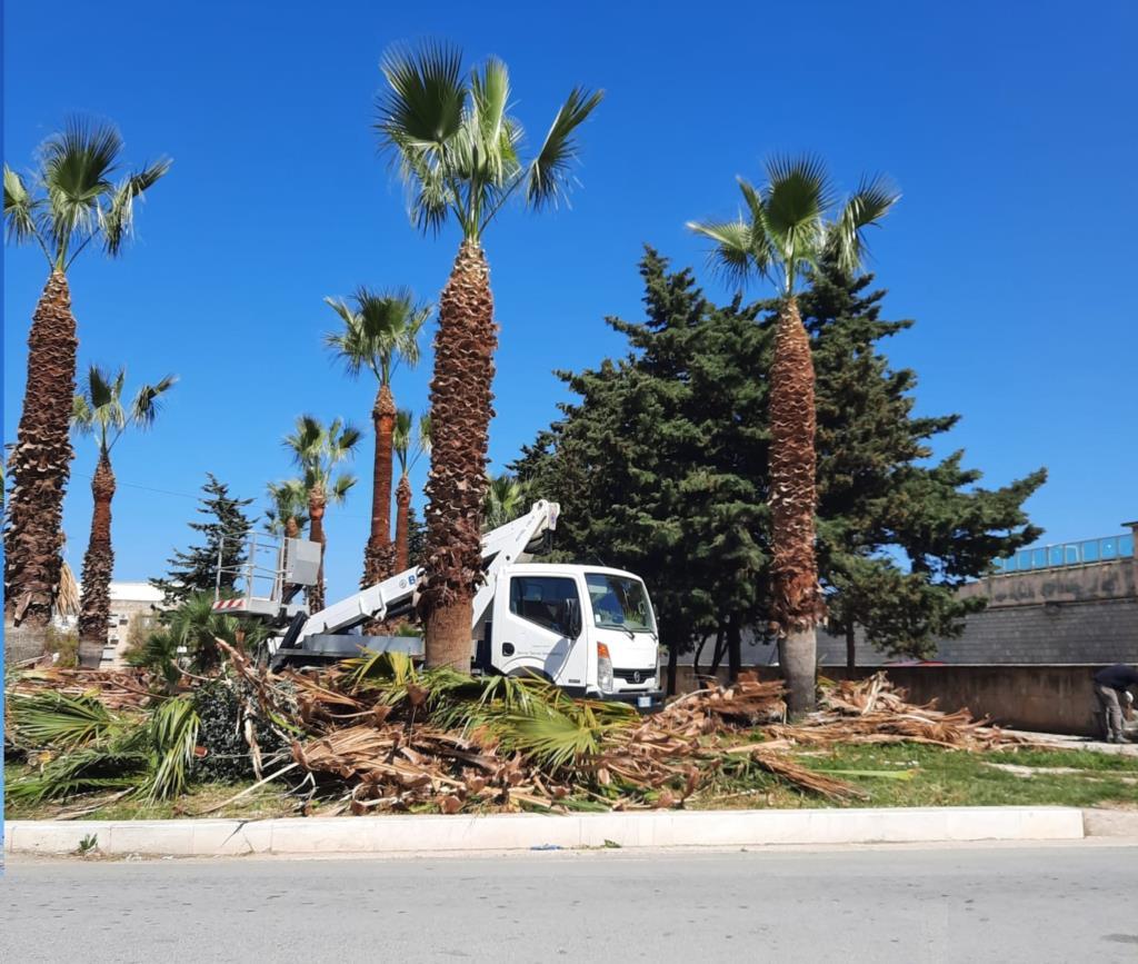 Erice: pulizia di strade e marciapiedi e cura per il verde pubblico