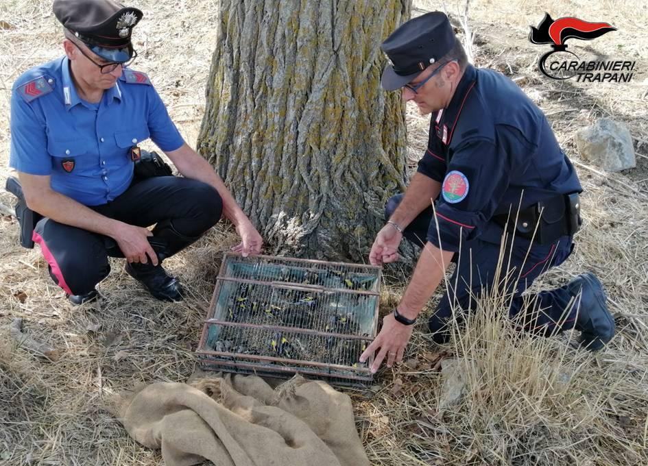 Castellammare del Golfo: arrestato un bracconiere