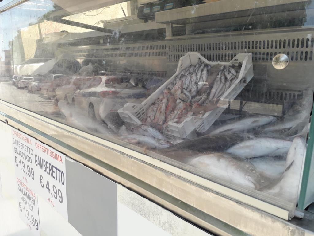 Castellammare del Golfo: oltre 30 chili di pesce non tracciabile sequestrato dalla polizia municipale e dalla guardia costiera