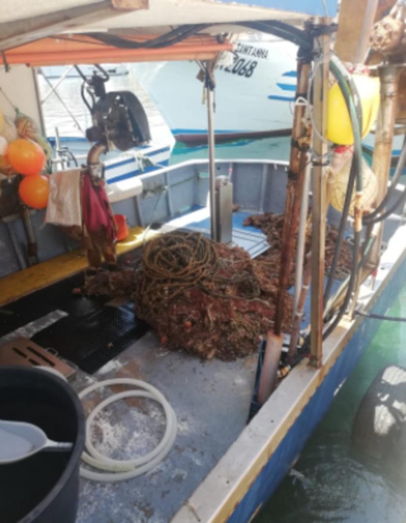 San Vito Lo Capo: attività congiunta tra Marevivo e Capitaneria per recupero reti fantasma