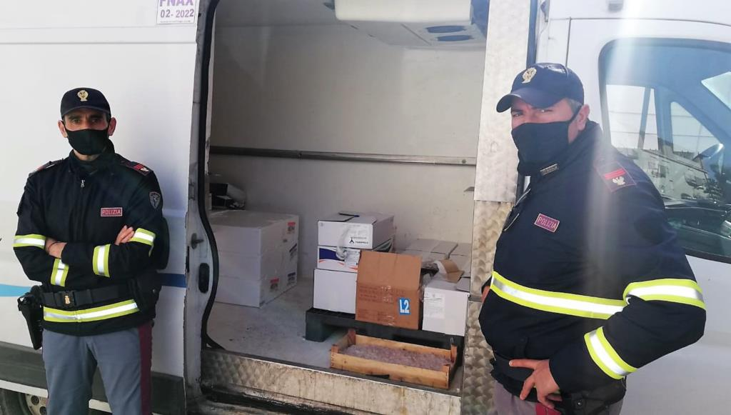 Sequestrati 110 kg di pesce surgelato male e non commestibile