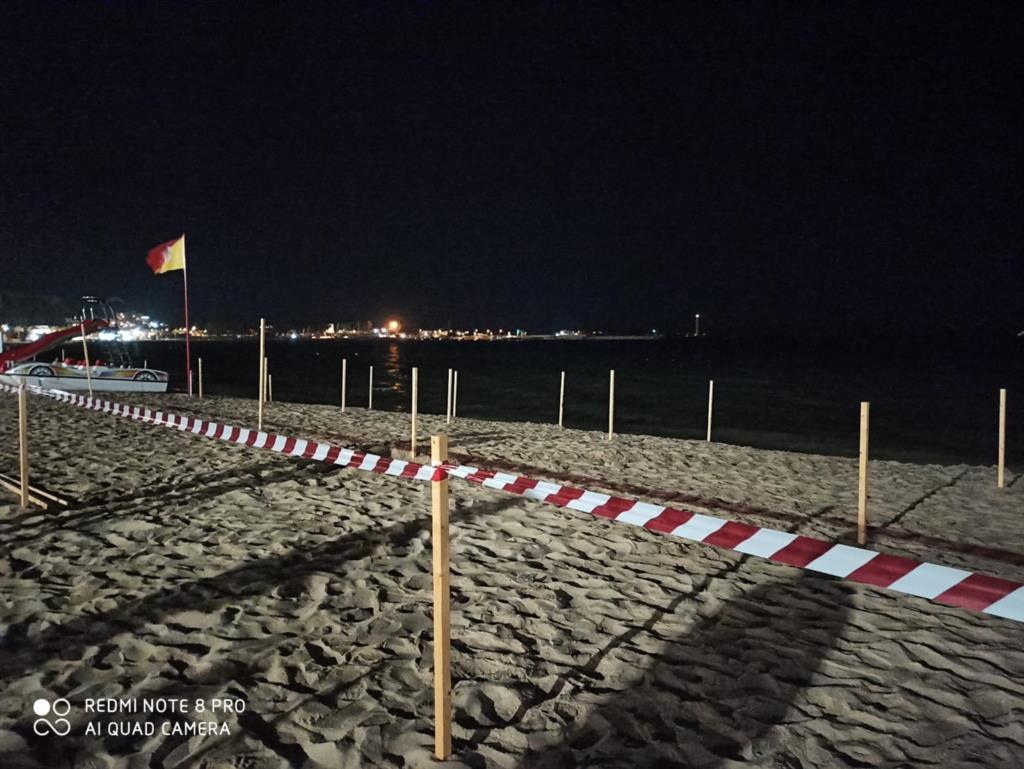 San Vito Lo Capo, avvistata in serata una caretta caretta sulla spiaggia