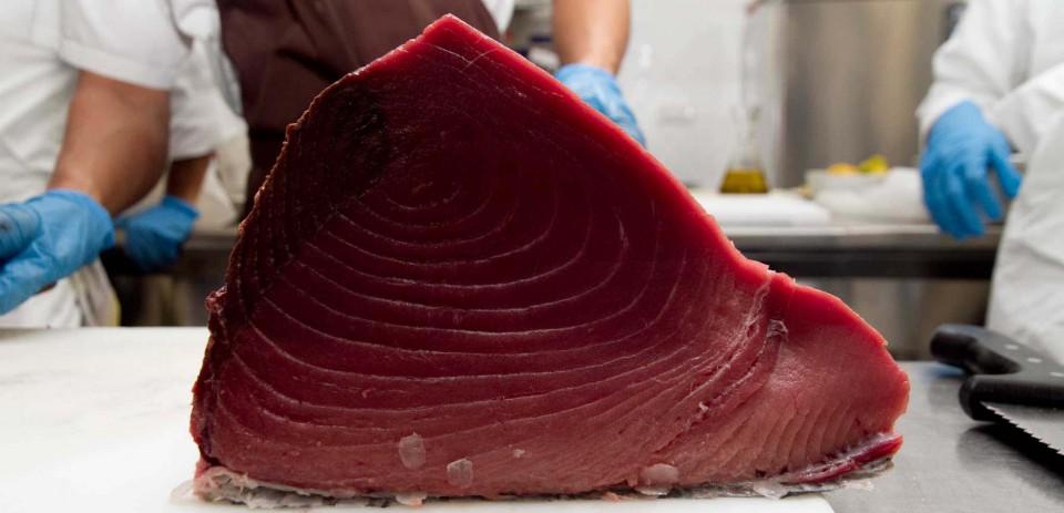 Controlli della Dogana di Trapani sul tonno rosso: l'agenzia dei monopoli recupera ulteriori diritti