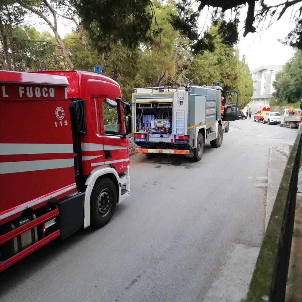 Incendio alla pineta comunale di Valderice, si contano i danni