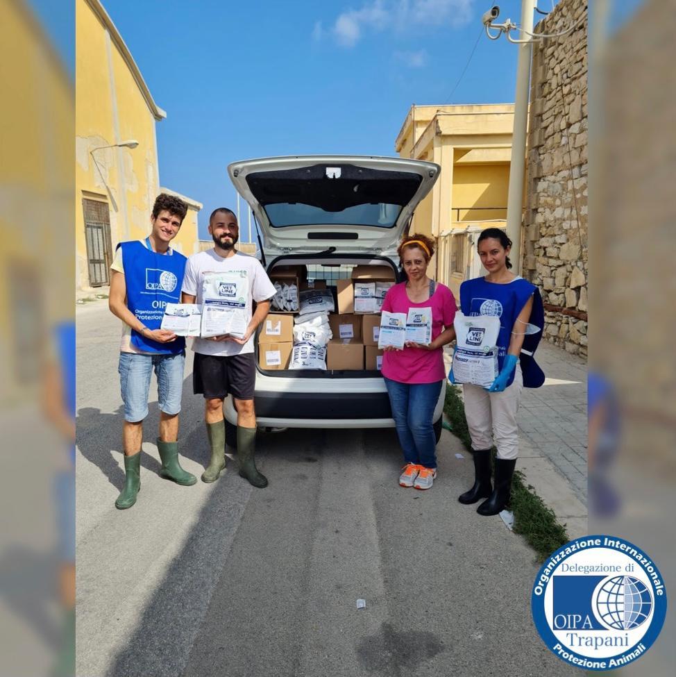 Trapani, donate all'Oipa tre pedane di cibo per gatti